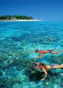 Snorkelling the Great Barrier Reef in Cairns, Australia