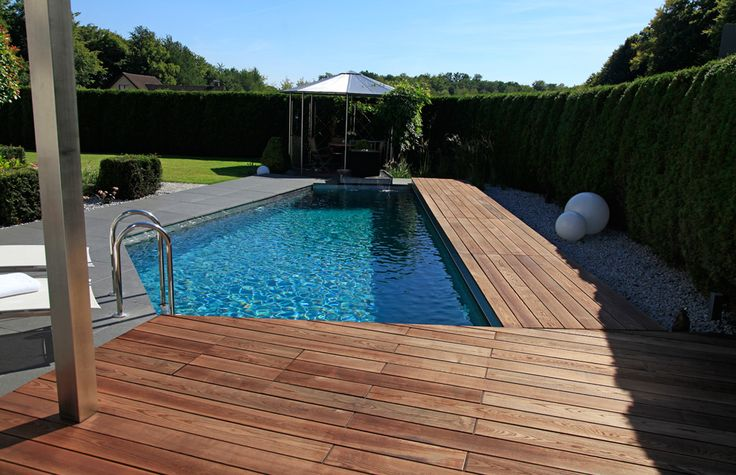All natural pool by BIOTOP. #chemicalfree #midcentury