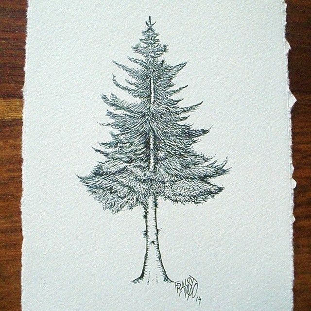 Resultado De Imagen Para Arboles Dibujos Tumblr Pino Arbol A Lapiz Pina Para Dibujar Dibujo De Pina