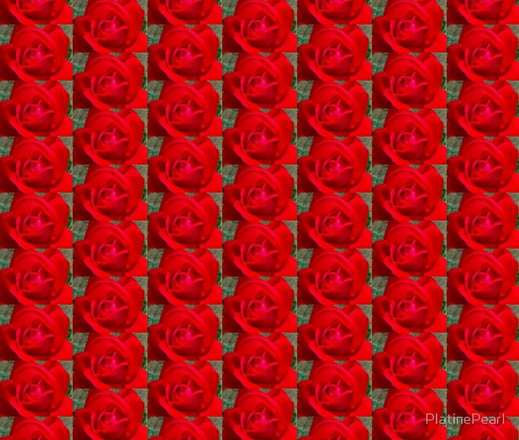 red rose #abstract #art