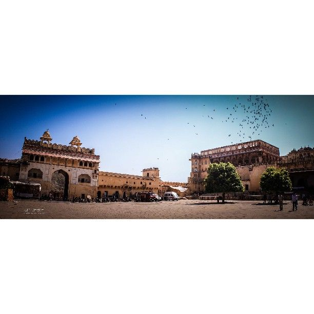 #desi_diaries#500px#increadibleindia#indianphotography#streetphotography#makeinindia#discoveryindia#indianculturehub#indianshutterbugs#natgeo#travelgram#behance#instagram#travelphotography#BeautifulJaipur#travel#indianculture#google#asia#culturevation#_soi#traveldiearies#explore#pinterest#natgeo#boredpanda#travelgram#discoveryindia#nationalgeographicindiatraveller