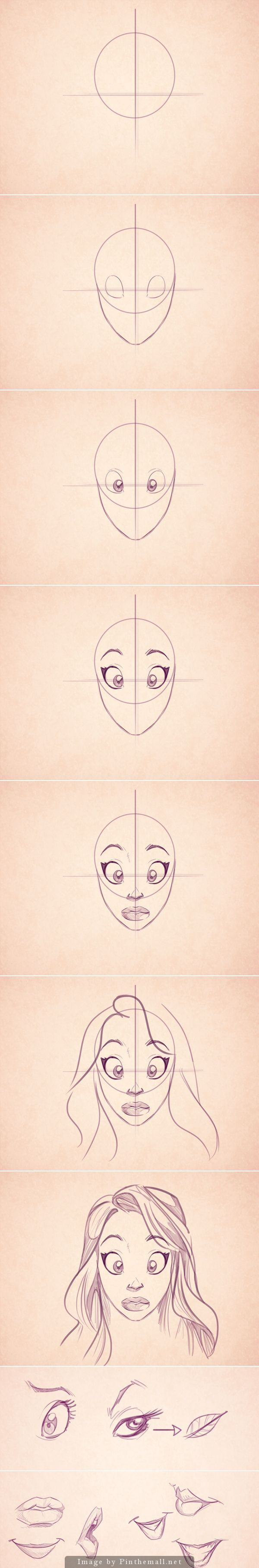 Cartoon Fundamentals: How to Draw the Female Form: