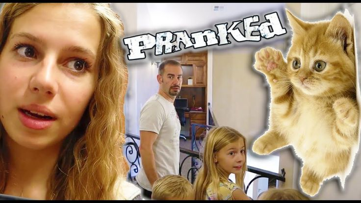 PRANKED My Parents With CUTE BABY KITTEN!     #BabyBunny, #BabyRabbit, #CuteBaby…