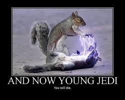 *giggle* Jedi squirrel humor