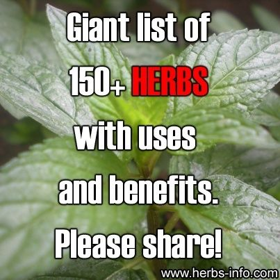 Giant List Of 150 Herbs With Uses and Benefits...A truly fantastic post | Be sure to check it out.. #herbs,#home_remedies