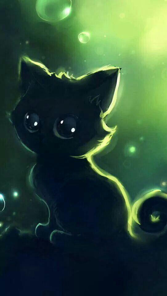 Big-eyed Black Cat.