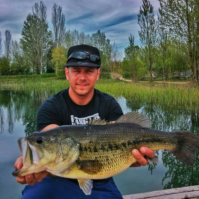 179 best images about fishing on pinterest for Bass fishing in the rain