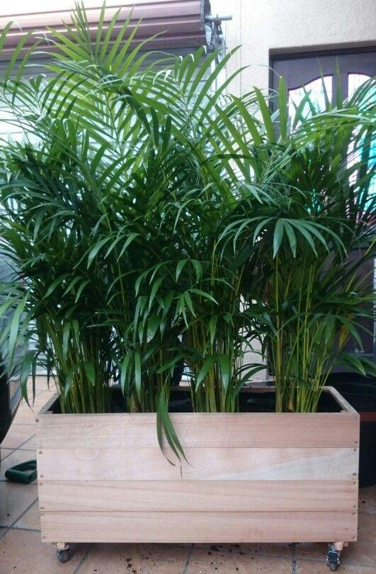 Planter built