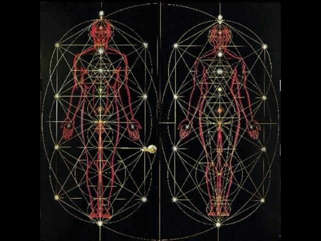 202 best images about Alex Grey & Psychedelic Art on ...