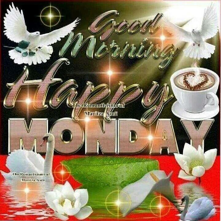 Good Morning Happy Monday monday good morning monday quotes good morning quotes happy monday monday quote happy monday quotes