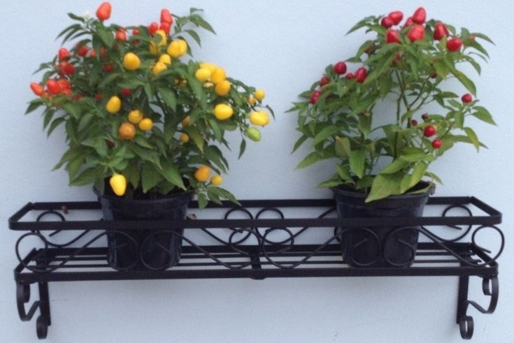 Floreira de parede para enfeite de jardim. <br>Comprimento 60cm x 15cm largura <br>Produto 100% artesanal. <br>Pintura eletrostática. <br>Vasos e flores não acompanham o produto. <br>Frete não incluso.