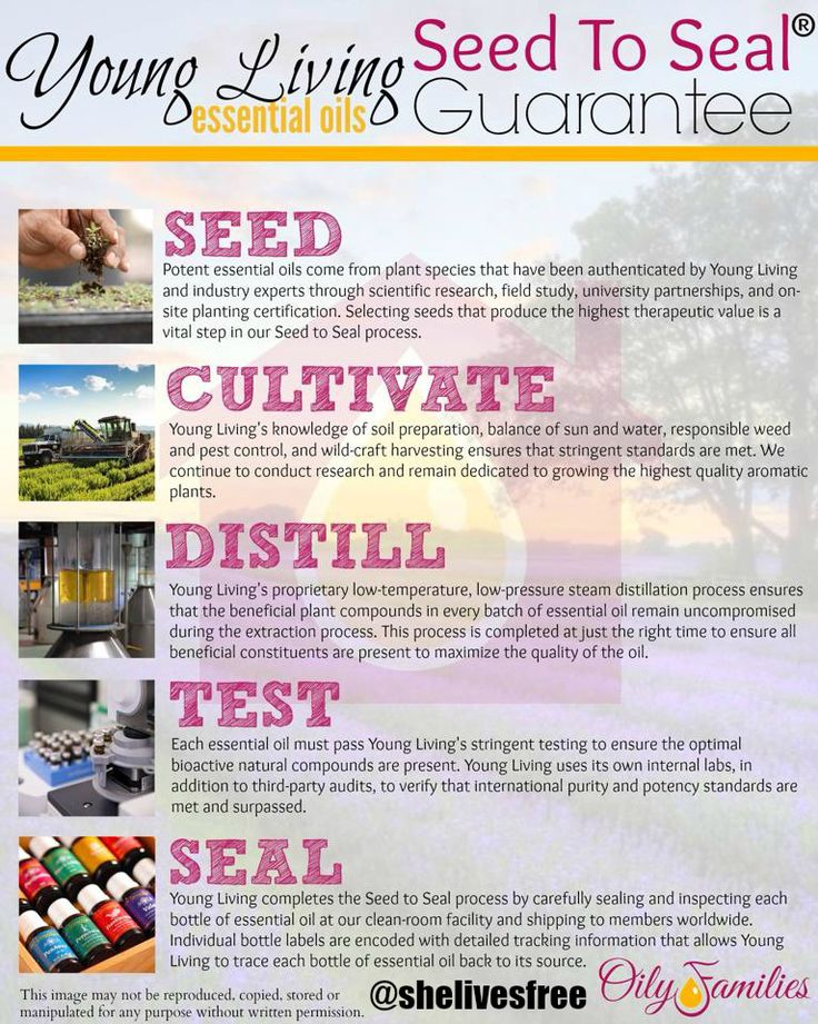Why we use essential oils in our and home and how you can get started too with this month's special promotion!