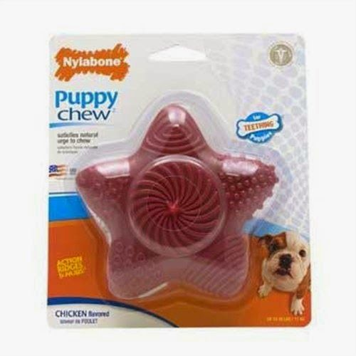 The 10 Best Puppy Chew Toys for Teething Puppies