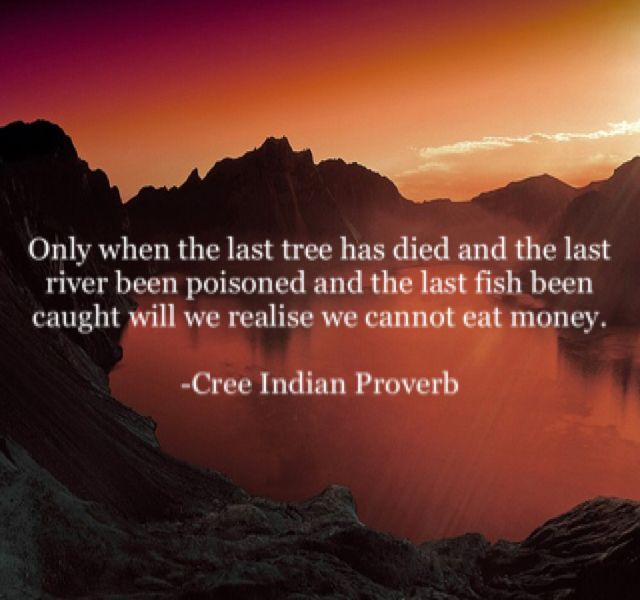 Only when the last tree has died and the last river been poisoned and the last fish been caught will we realise we cannot eat money.  -Cree Indian Proverb