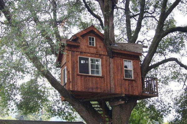 Whodunit: The Haunted Tree House