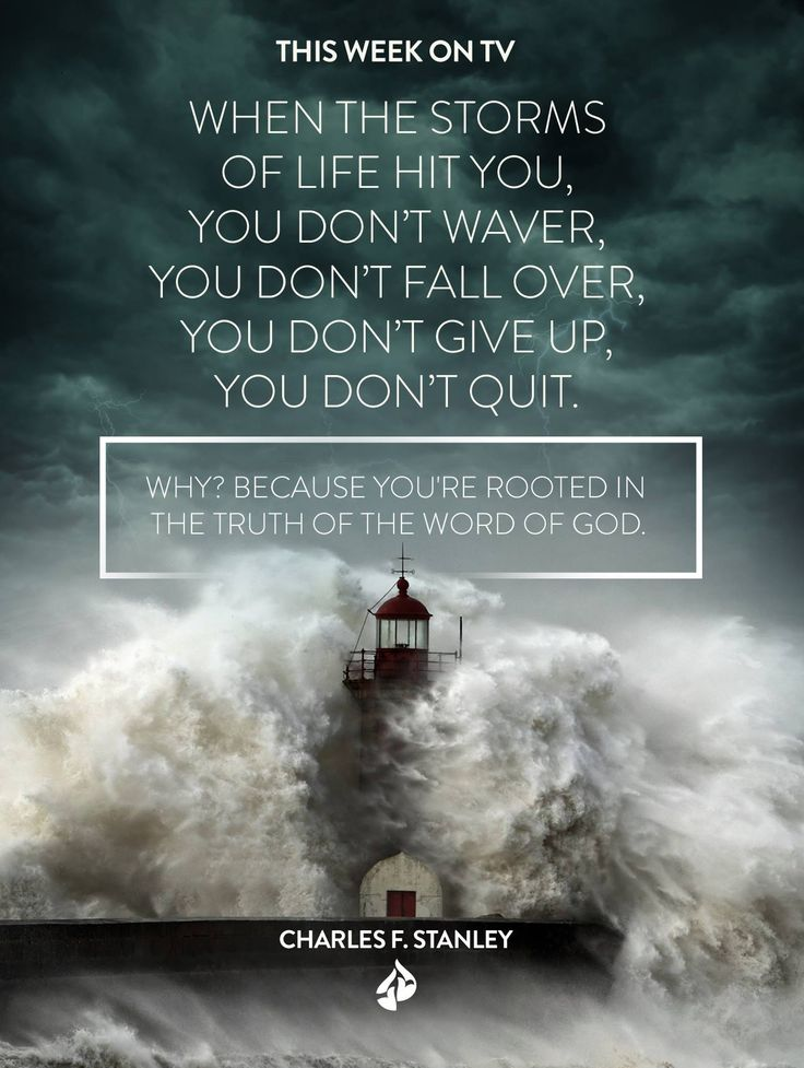 """""""When the storms of life hit you, you don't waver, you don't fall over, you don't give up, you don't quit. Why? Because you're rooted in the truth of the Word of God."""" Charles F. Stanley"""