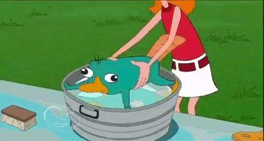 Avoiding taking a bath: Level perry
