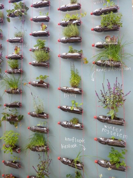 Best use I've seen for empty coke bottles - gotta love a vertical garden.  Via Eline Pellinkhof: a designer's journal by syzygy