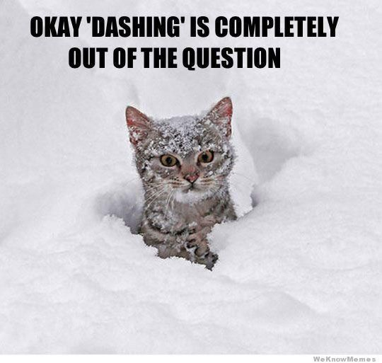 Dashing through the no.