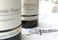 Vigne Blanche Chardonnay Pinot Noir Marc Meneau L'Espérance
