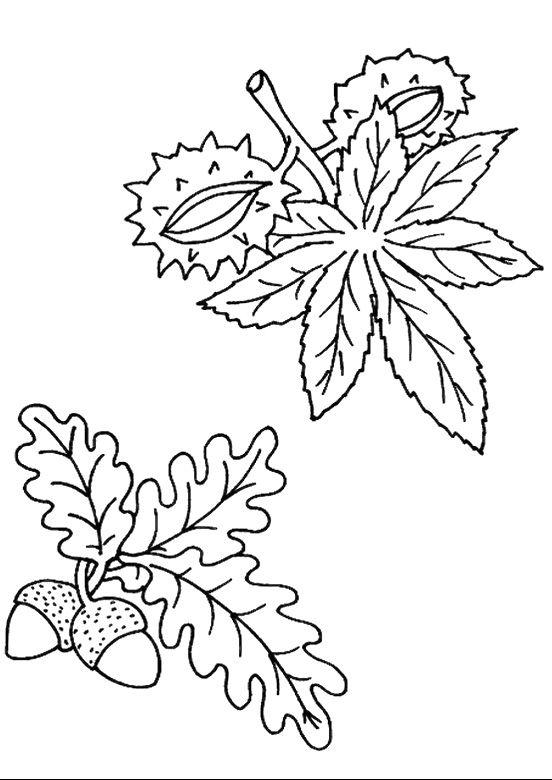 podzimni-listi-01.jpg (552×780)