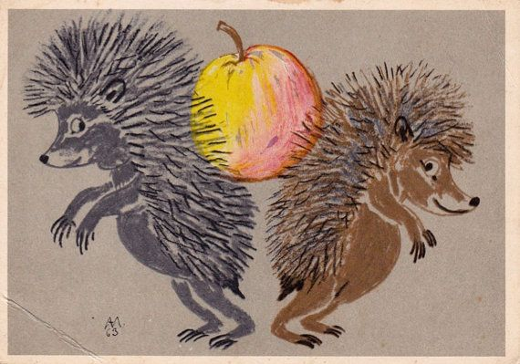 A. Laptev Hedgehogs Postcard  1964 Soviet by RussianSoulVintage