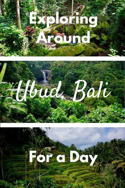 Exploring Around Ubud, Bali for 1 Day • Ultimate Guide ...