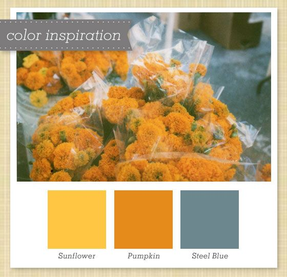 Yellow, Orange And Gray Color Palette 21