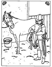 Het paard opzadelen