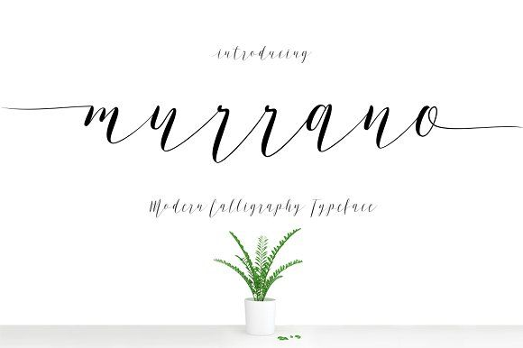 Murrano Script by DecaType on @creativemarket