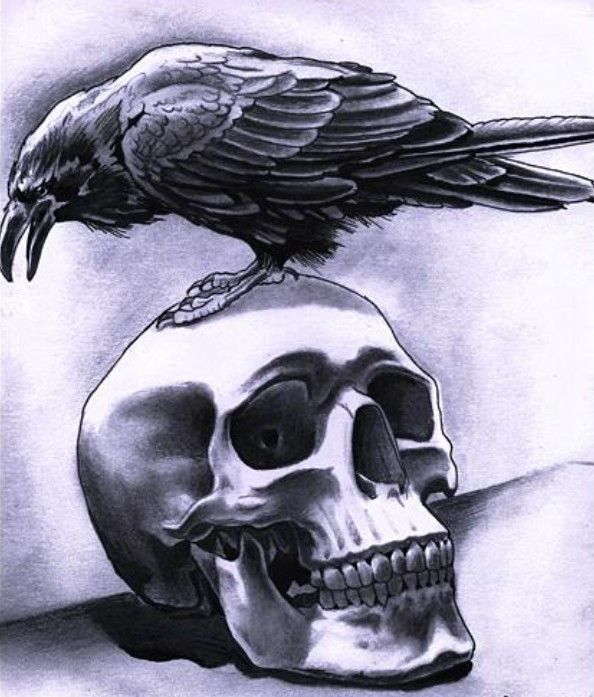 Crow + Skull
