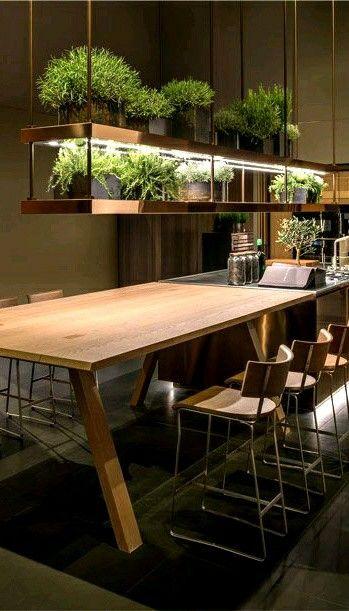 Moderne Küche, Garten Kräuter, Kräuter, Garten, Küche, Design, wohl fühlen   – Ilknur SimseKoc