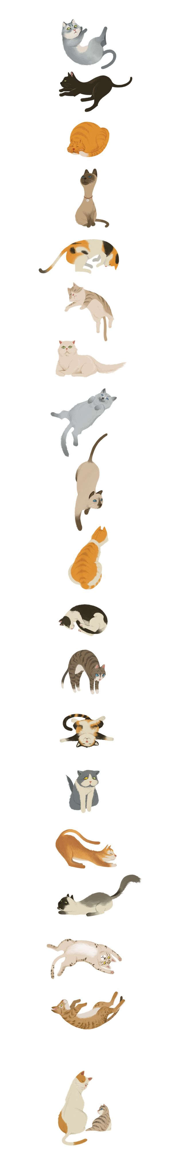 Cats by Wonho Jung #cats #CatIllustrations #illustrations