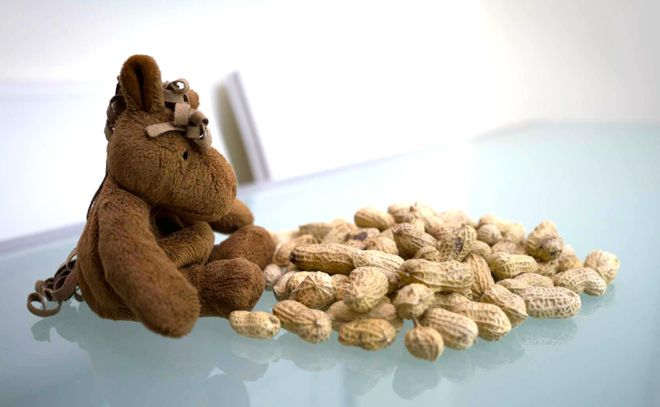 How do you even board a flight if your child is allergic to every airline's favourite snack: nuts? Find out with these handy travel tips on our website.  http://www.suitcasesandstrollers.com/interviews/view/kids-with-allergies?l=all #GoogleUs #travel #travelwithkids #familytravel #familytraveltips #traveltips #peanuts #allergies #wevedoneitsocanyou