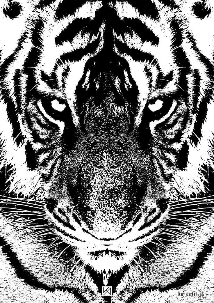 Billede af Sort tiger plakat - Panthera tigris