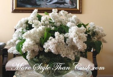 how to keep fresh cut lilacs from wilting
