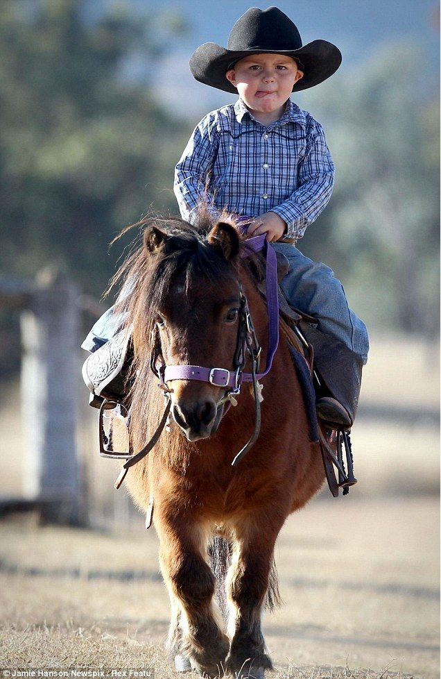 Ridin' high: It is perhaps no surprise the young cowboy has taken to the sport of barrel racing as he is the seventh-generation rodeo rider in his family, but he's two years old!