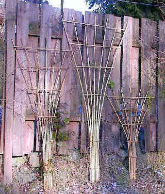 A taller handmade bamboo trellis, or traditional fan trellis made of sturdy cedar.