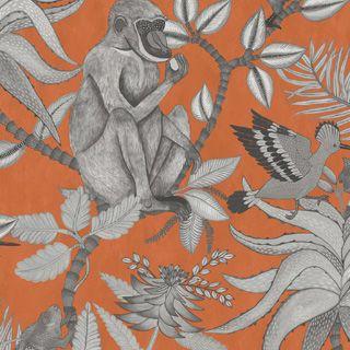 Cole & Son, Ardmore Collection Savuti Wallpaper
