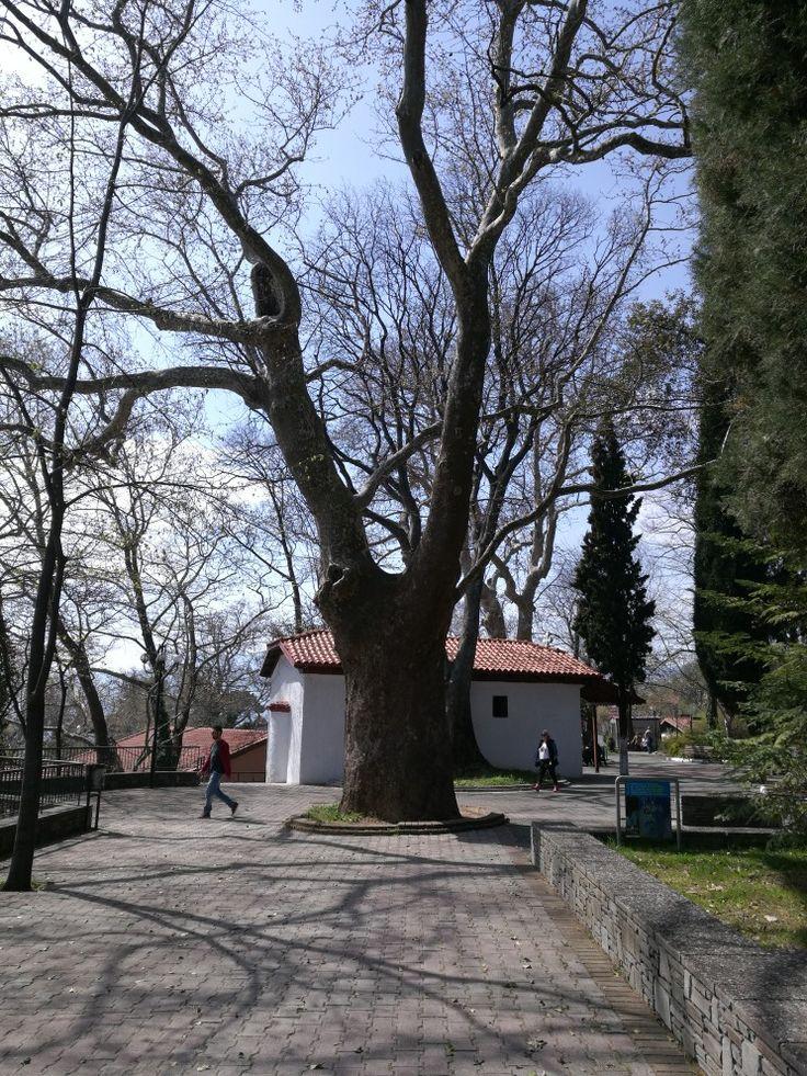 Waterfalls park in Edessa city, little church.
