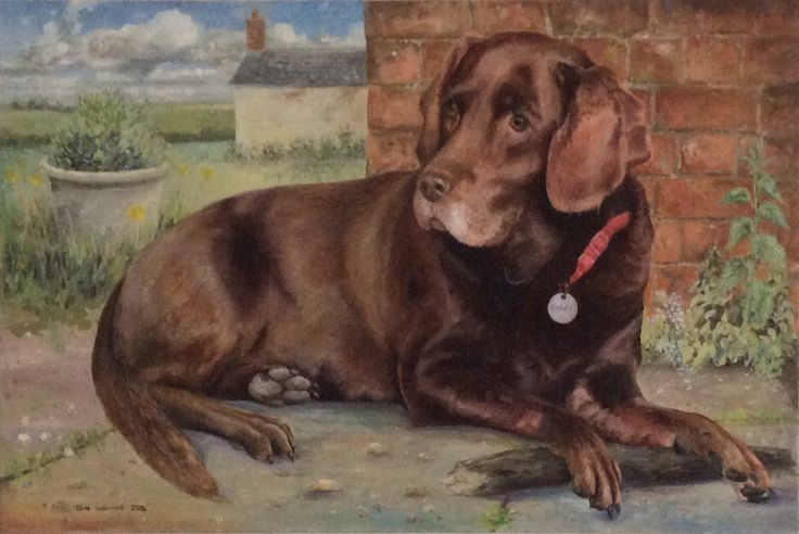 Bailey - Oil painting by Tom Wormell