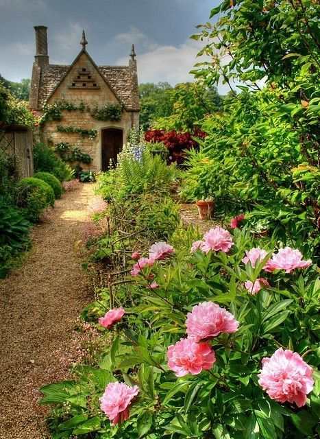Peonies On The Path To Dovecote Chipping Campden Gloucestershire By Hattie Cottage
