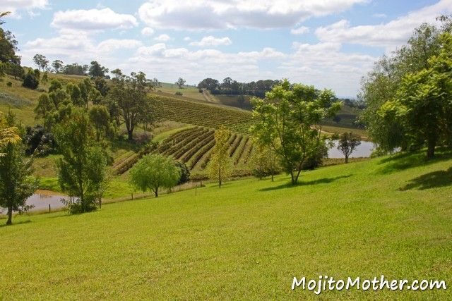 A Guide to Hunter Valley Wineries