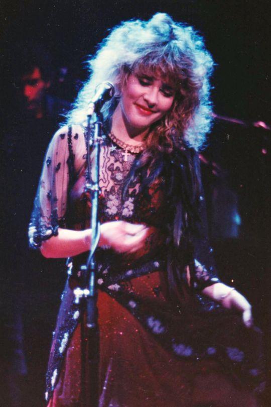 Stevie Nicks, The Wild Heart Tour