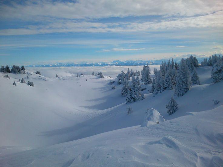 Vers le crêt de la Neige - Monts Jura - sous les nuages le Lac Léman - au loin les alpes