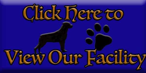 Click to view Ballardhaus Rottweiler Kennels