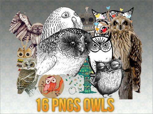 16 ong owl by sodust.deviantart.com on @DeviantArt