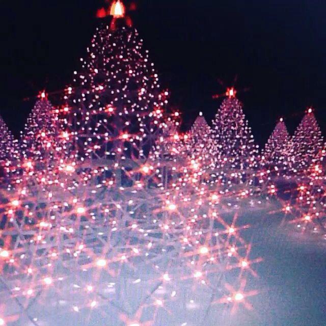 Ele vem chegando... Natal, nascimento de Jesus Cristo, nosso Salvador! #Jesus #Natal