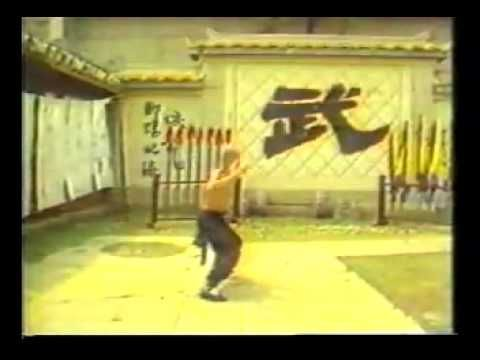 劉家輝 Gordon Liu 洪拳 虎鶴雙形(Hung Gar  Kuen Tiger and Crane Form)Fu Hok Seung ...