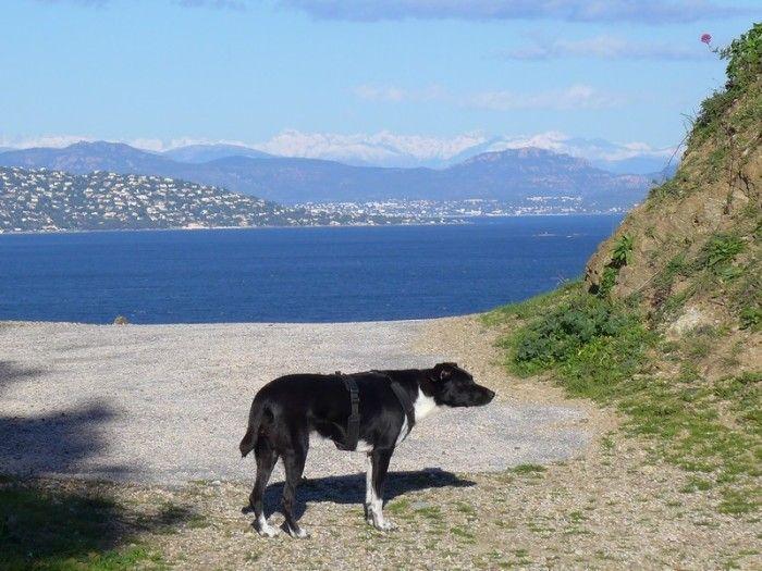 St Tropez Ruhig Und Beschaulich Im Winter Urlaub Reisen Ausflug